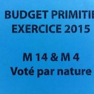 Conseil municipal du 29 janvier 2015